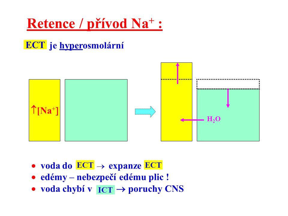 Retence / přívod Na+ : je hyperosmolární ECT [Na+